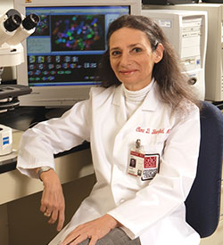 Clara D. Bloomfield, MD